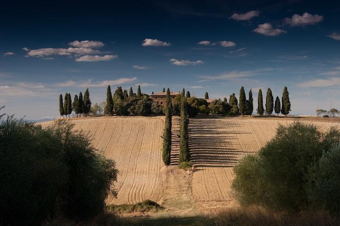 Toscana4jpg