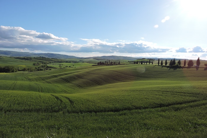 Toscana5